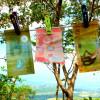 Vivre au Costa Rica: combien ça coûte??!! Article 4 de 5